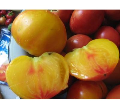Насіння помідору Грейпфрут