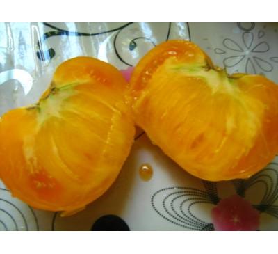 Насіння помідору сорту Хурма