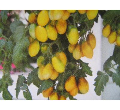 Насіння помідору кімнатного Peardrops