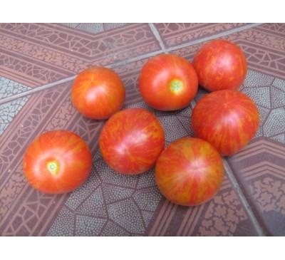 """Насіння помідору сорту """"Смугастий"""""""